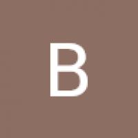 borghirolovini